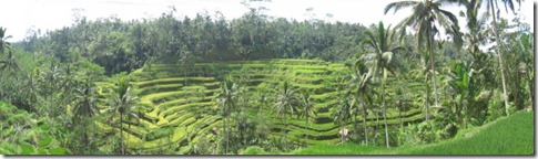 The island of Bali (6/6)